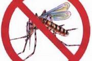 dengue-180x120